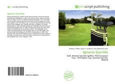 Portada del libro de Ignacio Garrido