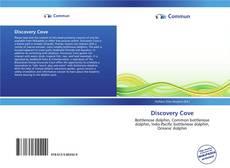 Discovery Cove kitap kapağı