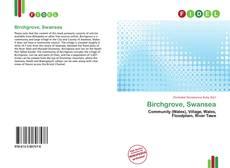 Bookcover of Birchgrove, Swansea