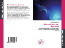 Bookcover of Mount Pleasant, Swansea