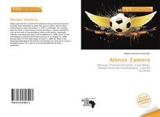 Portada del libro de Alonso Zamora
