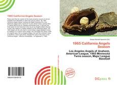 Buchcover von 1965 California Angels Season