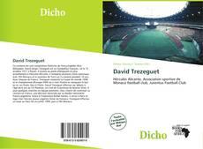 Bookcover of David Trezeguet