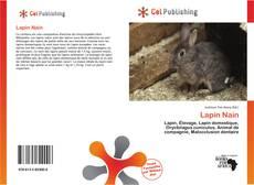 Buchcover von Lapin Nain