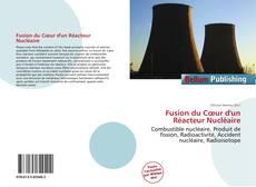 Bookcover of Fusion du Cœur d'un Réacteur Nucléaire
