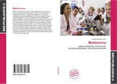 Bookcover of Methionine