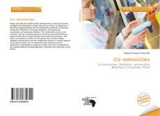 Co-amoxiclav kitap kapağı