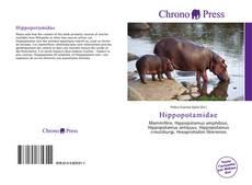 Borítókép a  Hippopotamidae - hoz