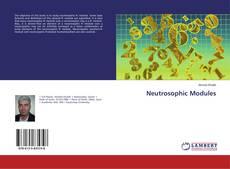 Bookcover of Neutrosophic Modules