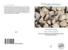 Bookcover of Atys (Gastropod)