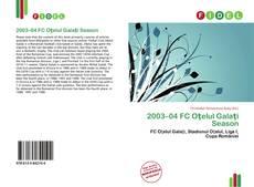 Обложка 2003–04 FC Oţelul Galaţi Season