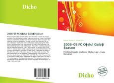 Обложка 2008–09 FC Oţelul Galaţi Season