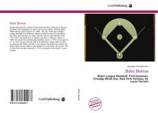 Bookcover of Babe Borton