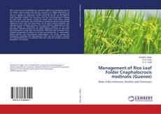 Bookcover of Management of Rice Leaf Folder Cnaphalocrocis medinalis (Guenee)