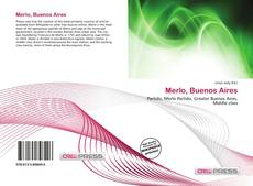 Bookcover of Merlo, Buenos Aires