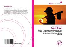 Bookcover of Ángel Bravo