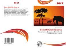 Bookcover of Beza Mahafaly Reserve