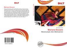 Bookcover of Mariana Seoane