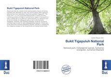 Bookcover of Bukit Tigapuluh National Park