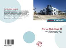 Обложка Florida State Road 30