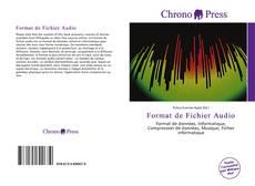 Format de Fichier Audio kitap kapağı