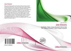 Bookcover of Joe Cicero
