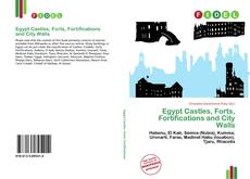 Egypt Castles, Forts, Fortifications and City Walls kitap kapağı
