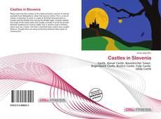 Buchcover von Castles in Slovenia