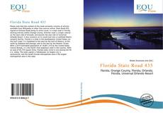 Bookcover of Florida State Road 435