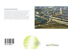 Capa do livro de Florida State Road 586
