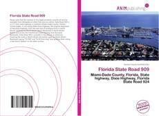 Обложка Florida State Road 909