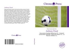 Bookcover of Anthony Flood