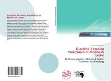Giardino Botanico Preistorico di Molina di Ledro kitap kapağı