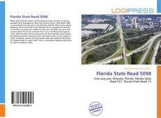 Bookcover of Florida State Road 5098