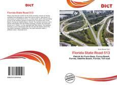 Buchcover von Florida State Road 513