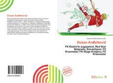 Dušan Anđelković kitap kapağı