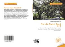 Portada del libro de Florida State Road 810