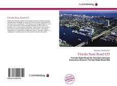 Обложка Florida State Road 825