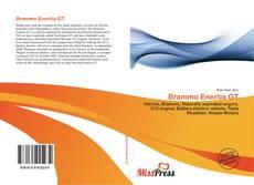 Bookcover of Brammo Enertia GT