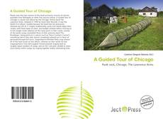 Buchcover von A Guided Tour of Chicago