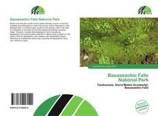 Portada del libro de Basaseachic Falls National Park