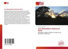 Bookcover of Los Remedios National Park