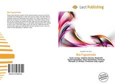 Bookcover of Bia Figueiredo
