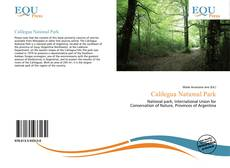 Bookcover of Calilegua National Park