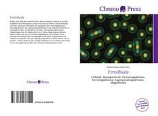 Capa do livro de Ferrofluide