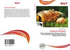 Portada del libro de Joaquín Andújar