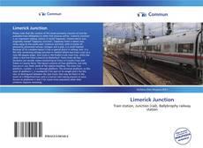 Обложка Limerick Junction