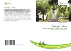 Copertina di Coongie Lakes