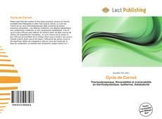 Cycle de Carnot kitap kapağı