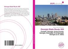 Bookcover of Georgia State Route 300